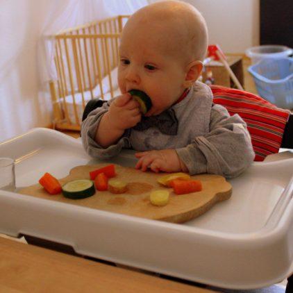 teller und besteck das richtige zubehoer fuer baby led weaning