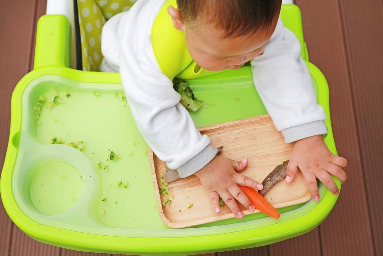 ab wann dürfen babys fleisch essen